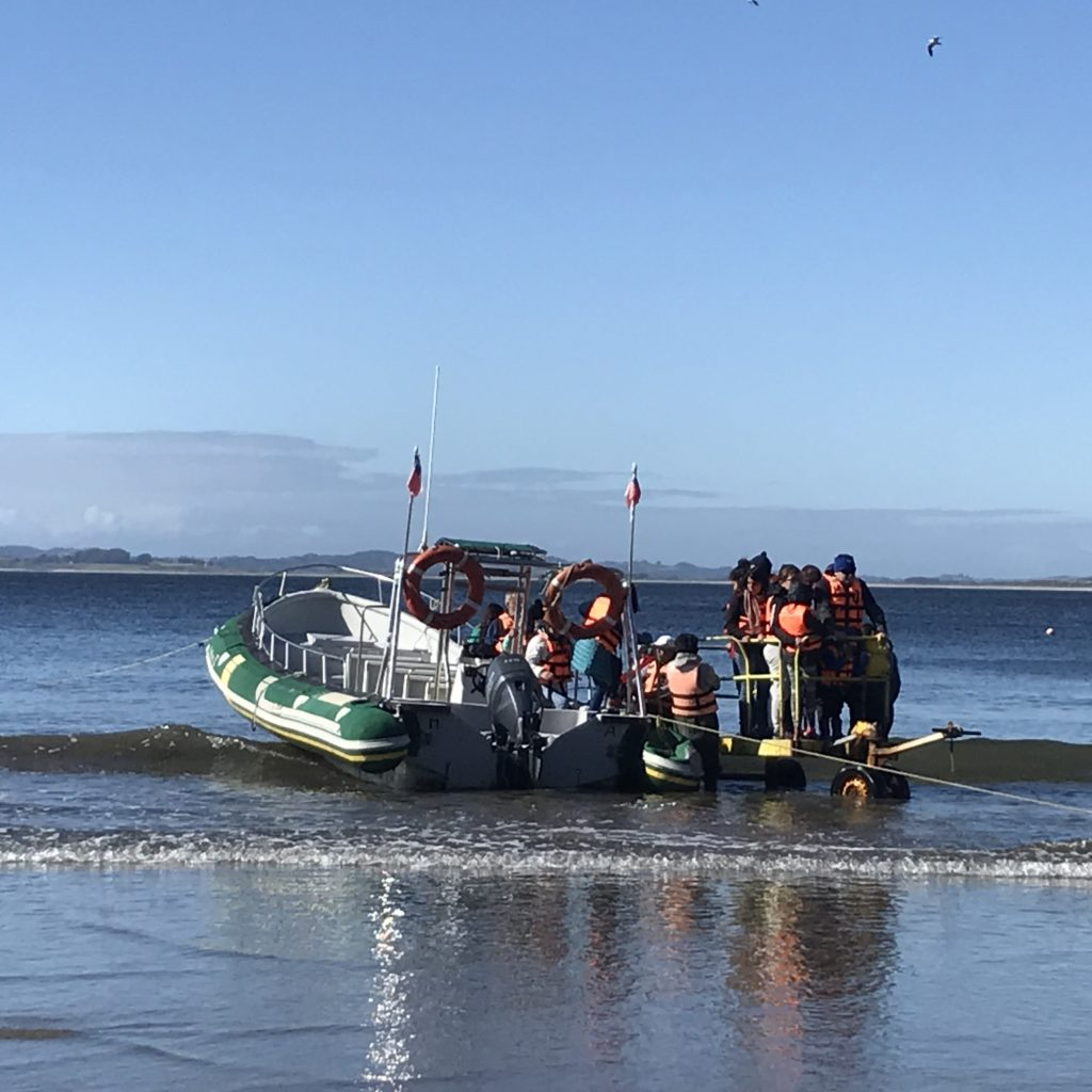 Boat to see penguins on Chiloé Island.