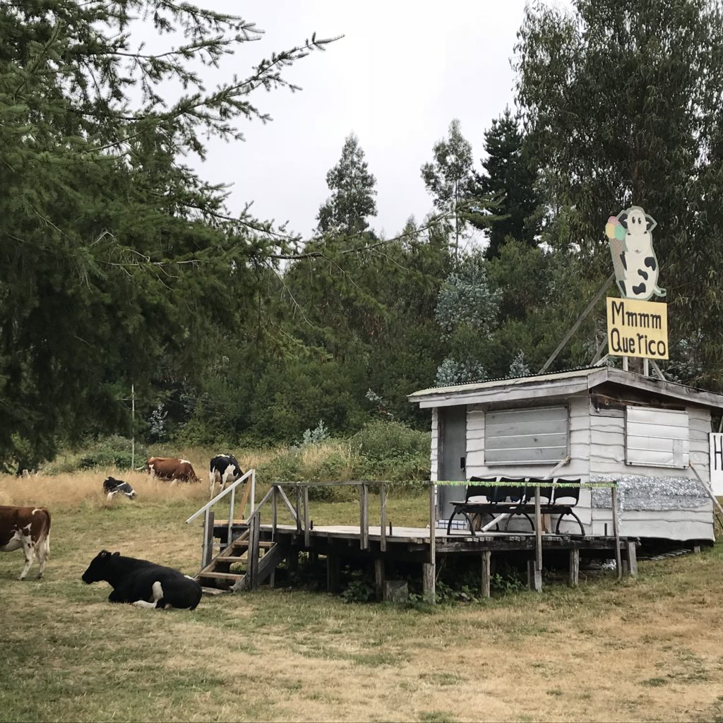 Ice cream stand in a cow pasture.