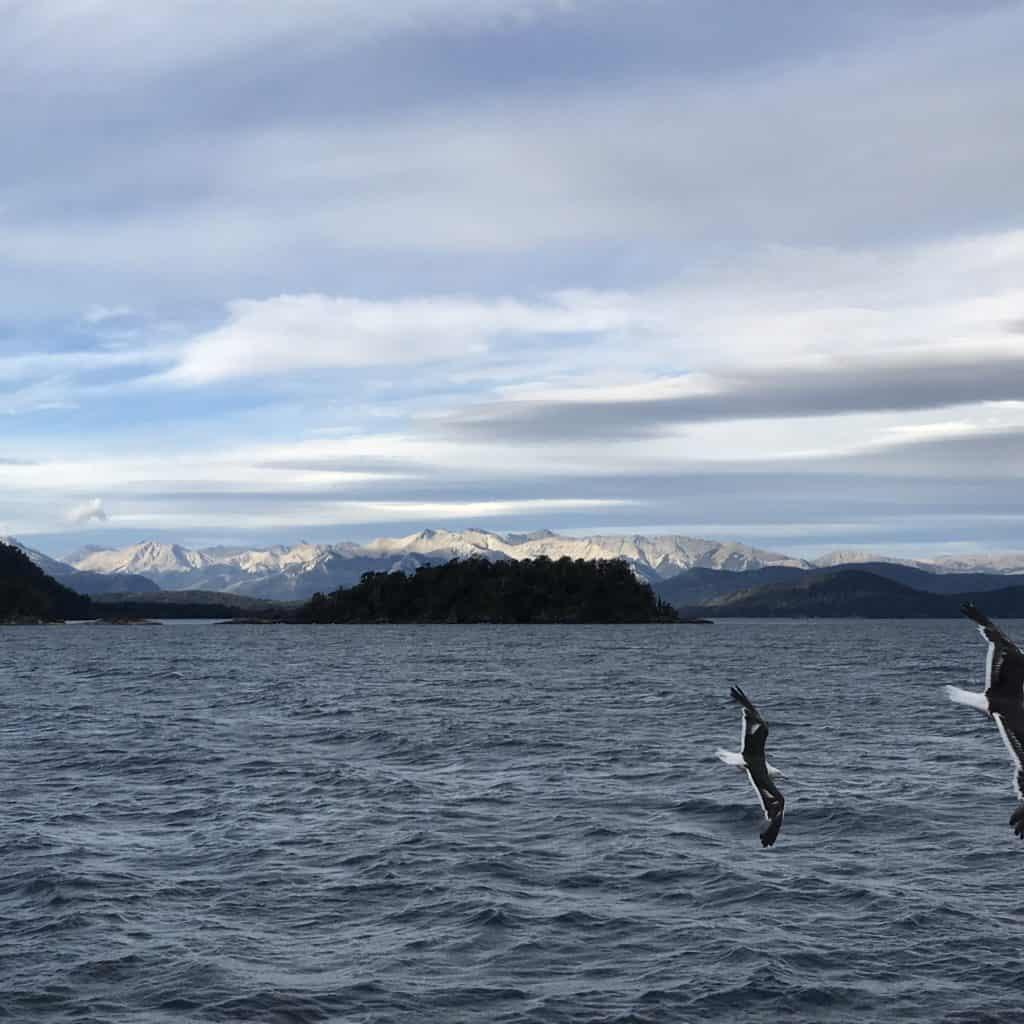Seagulls flying over Nahuel Huapi lake.