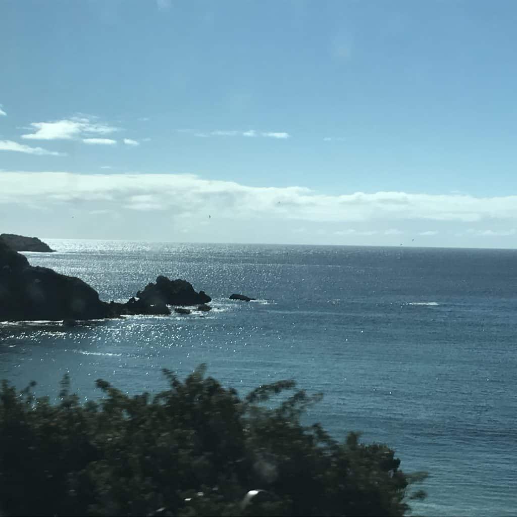 Drive to Pingüineras de Puñihuil.
