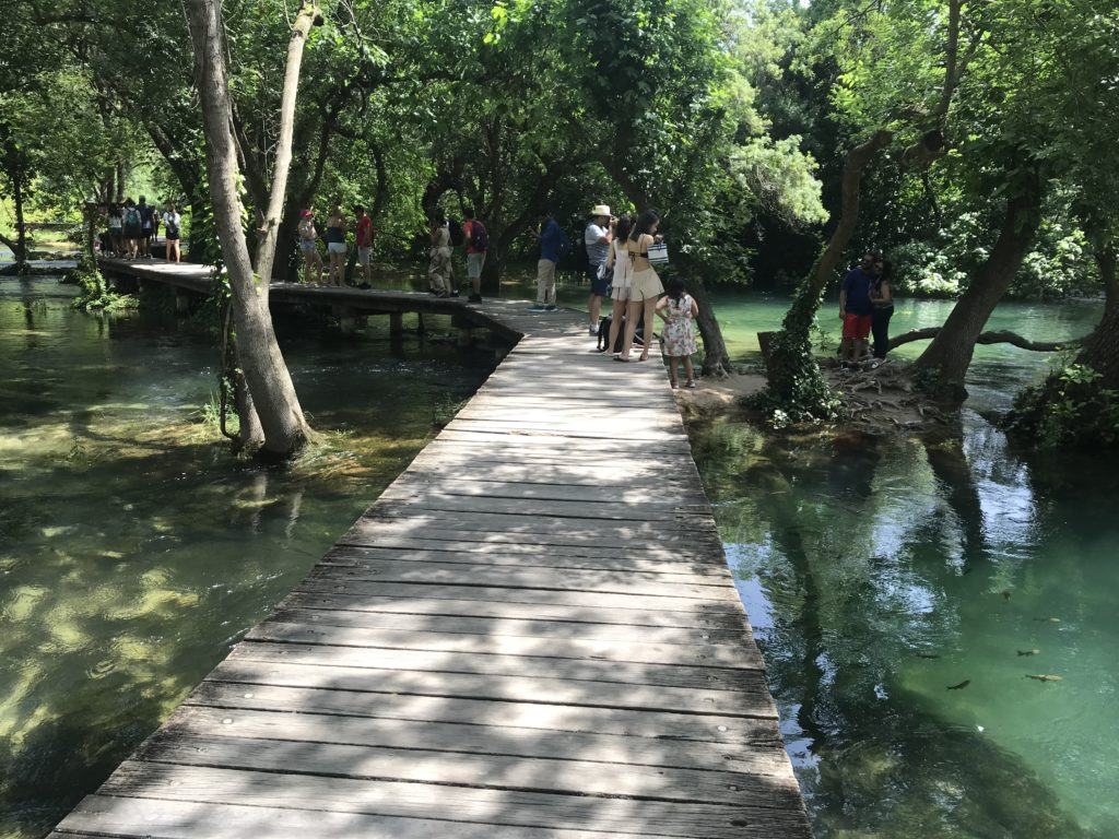 The boardwalk that passes through Krka National Park.  Fish are seen on either side of the boardwalk.