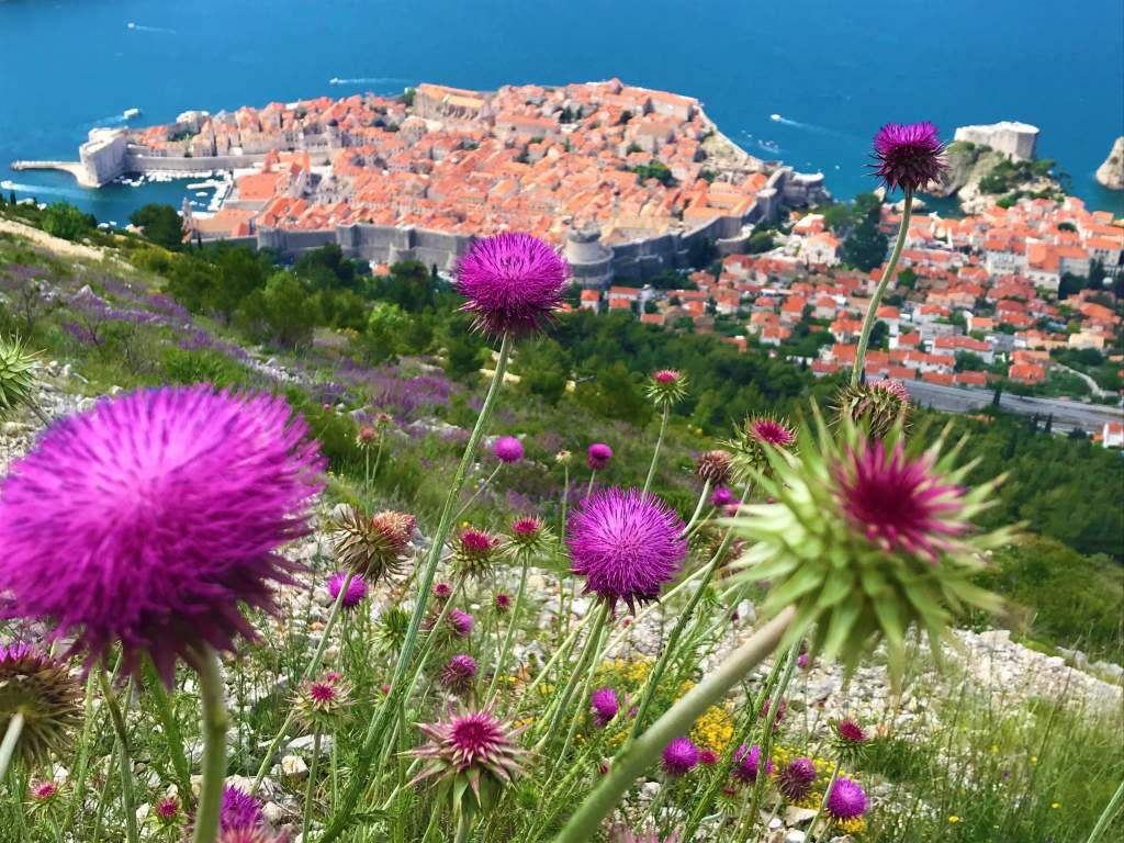 A view of Dubrovnik old town, about half way up the Mount Srd hike.