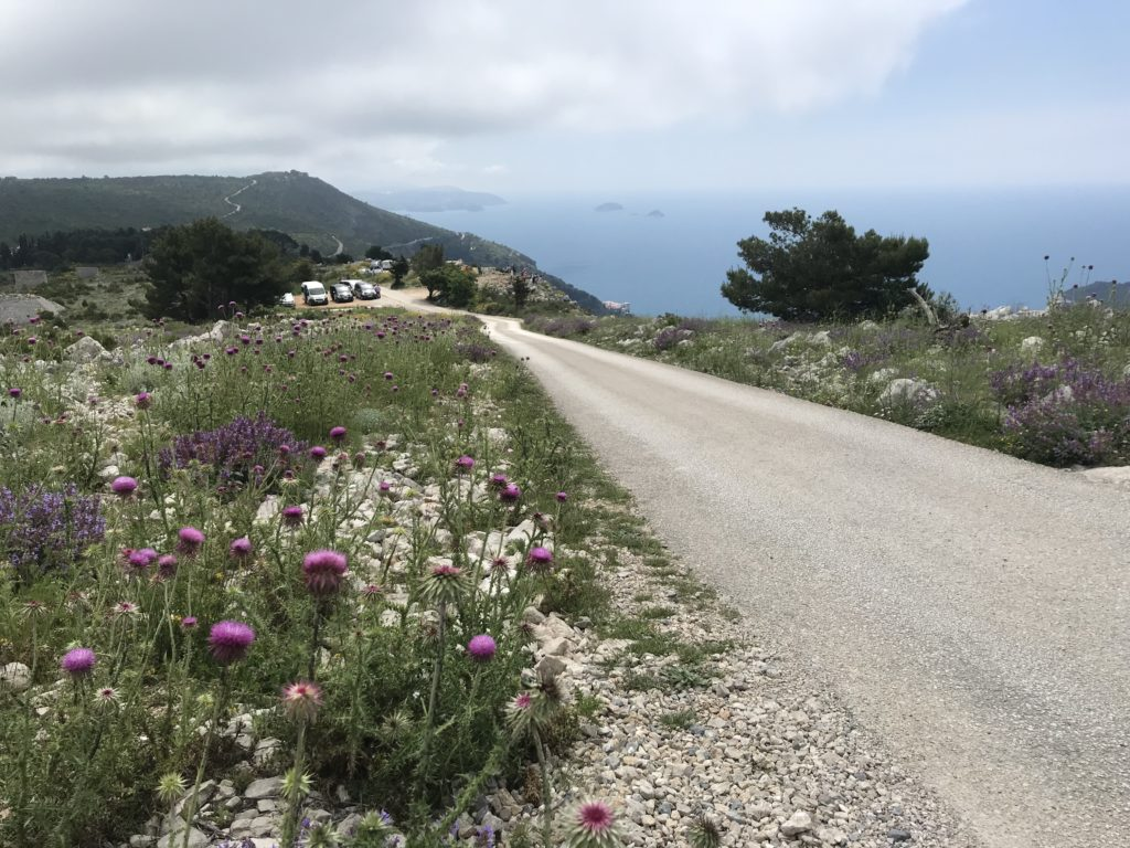 The road to Bosanka passes through the countryside with coastal views.