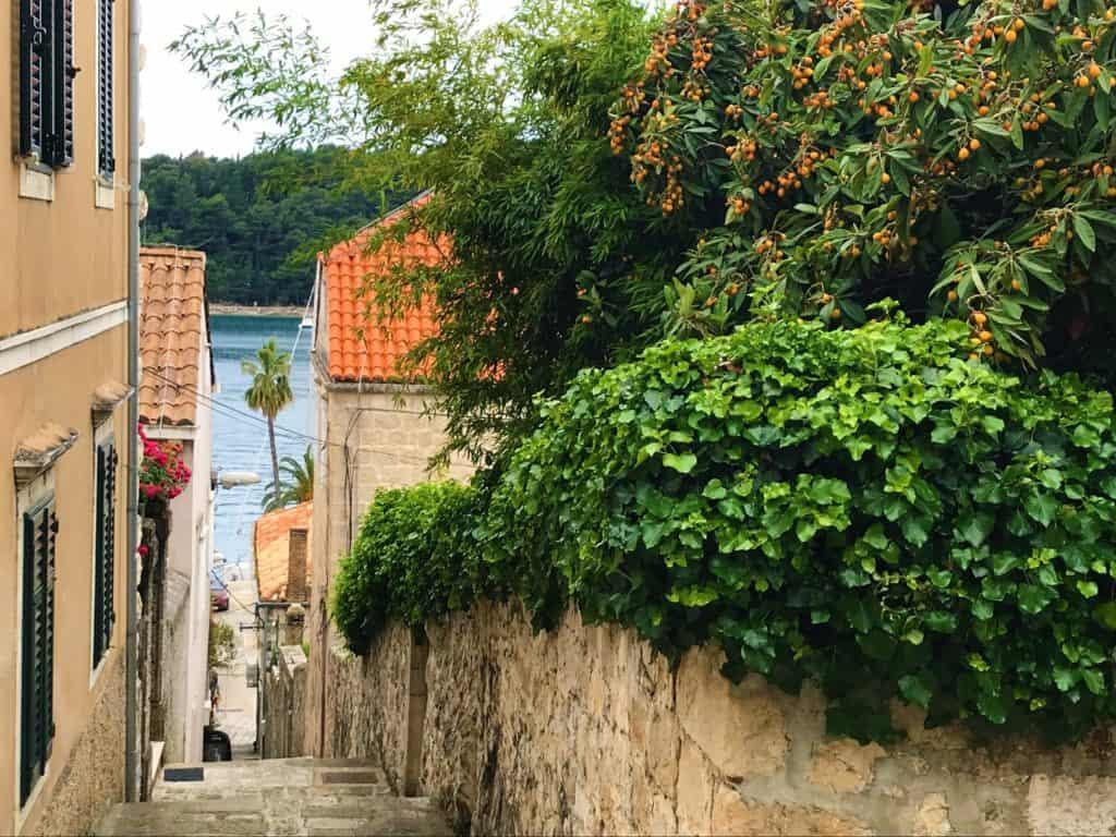 A pretty side street in Cavtat.