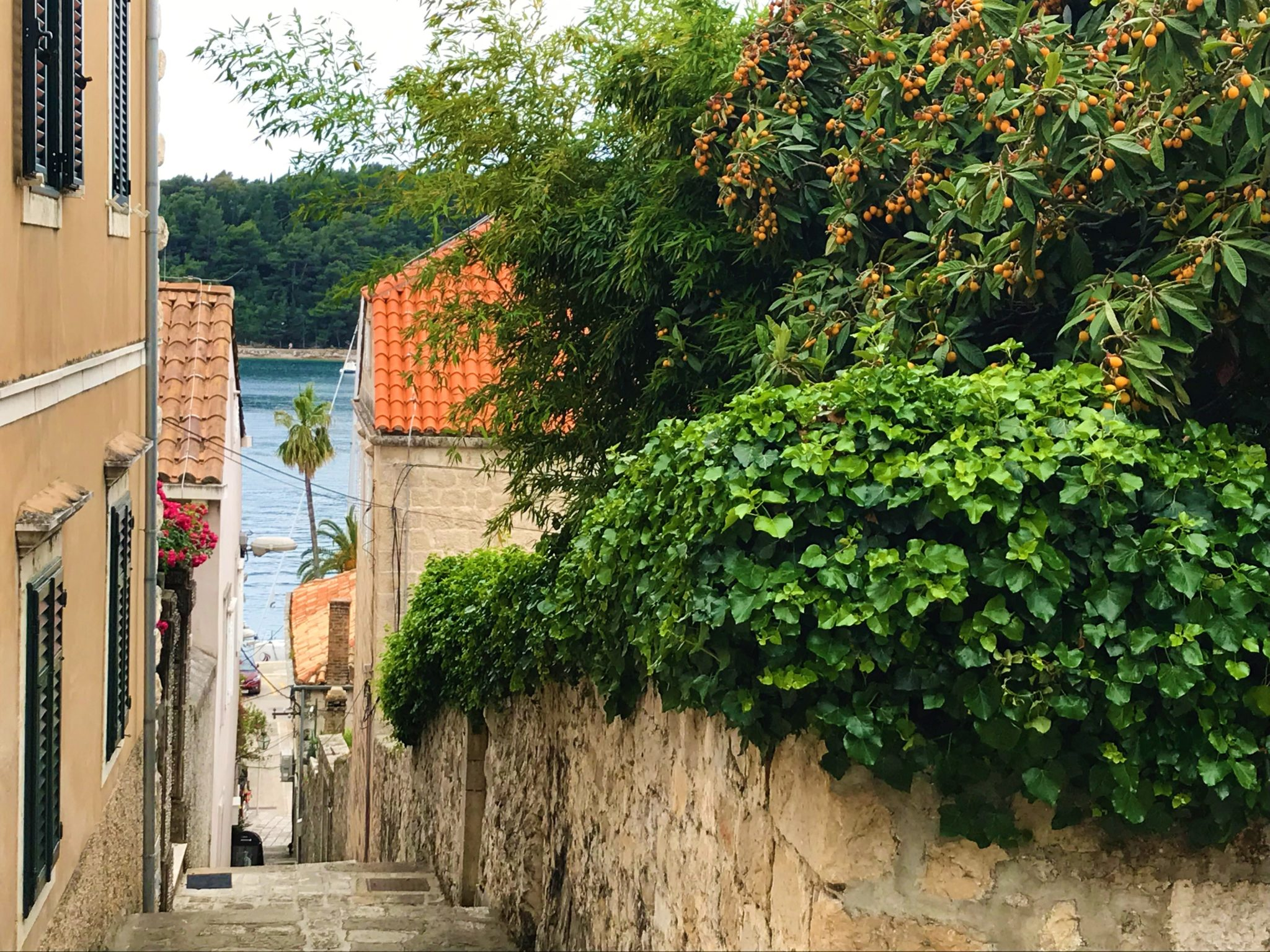 Day Trip to Cavtat: Everything You Need to Know