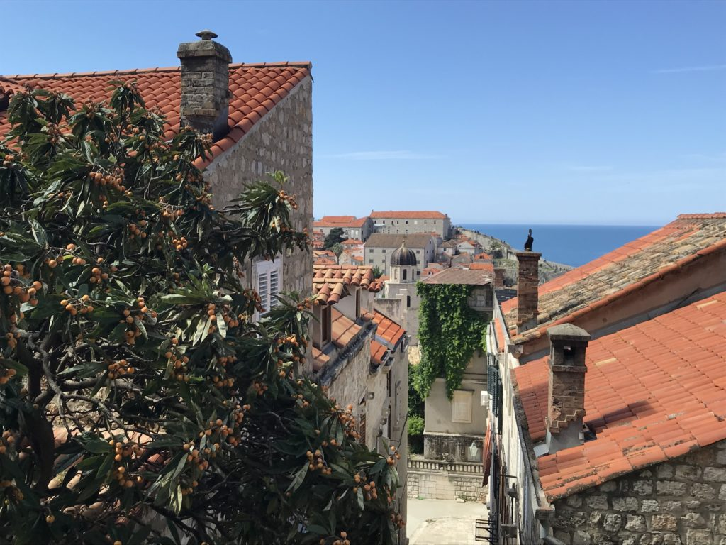 A view of old town Dubrovnik from high up in the staircases.