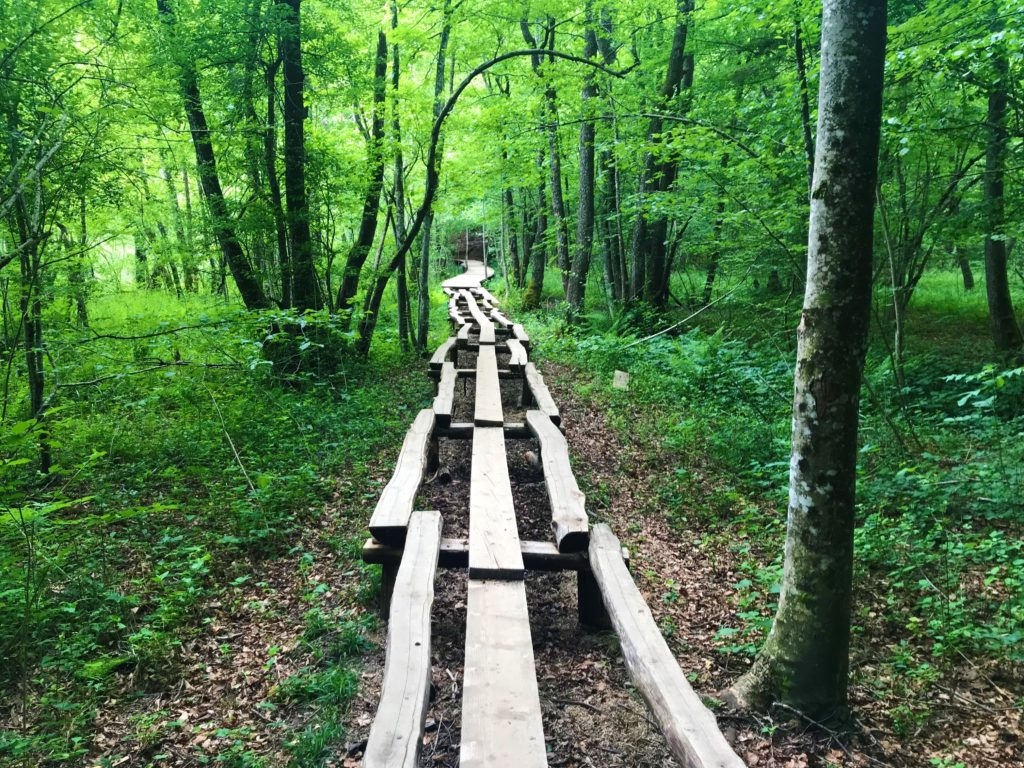 """This wooden boardwalk is used for the """"K"""" path."""