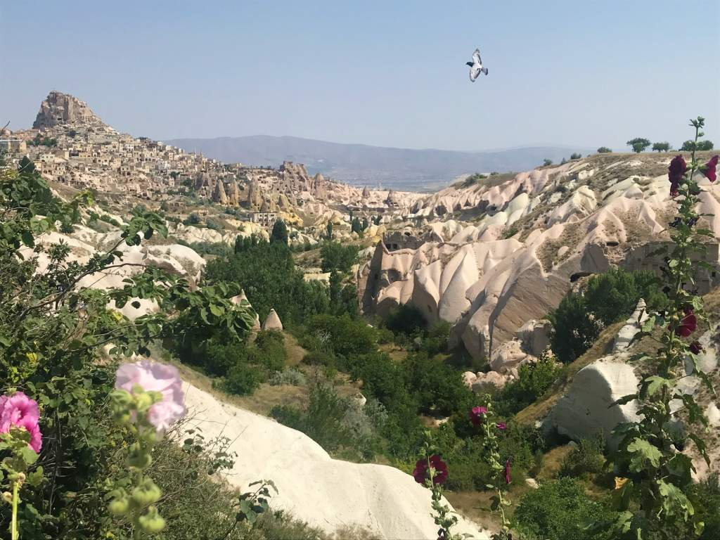 Bus from Pamukkale to Cappadocia: Tips & Tricks