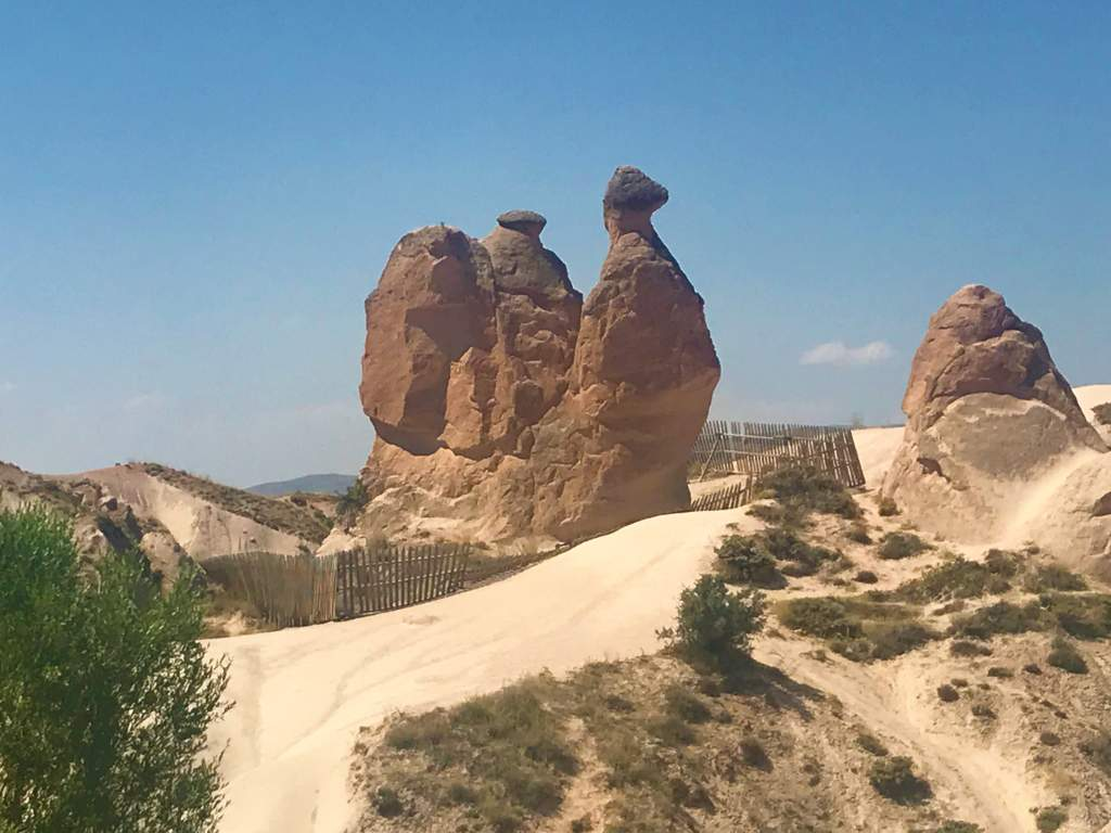 From the Devrent Valley accessible viewpoint in Cappadocia, you can see this rock camel.