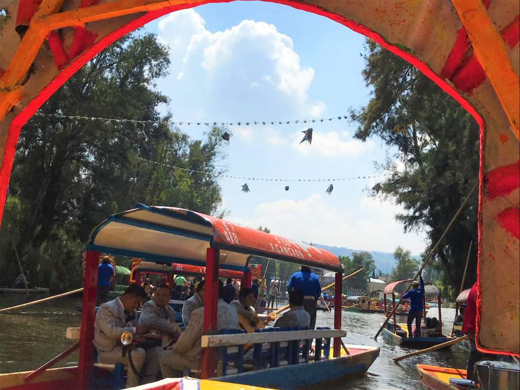 A view of the Xochimilco canal from a boat.