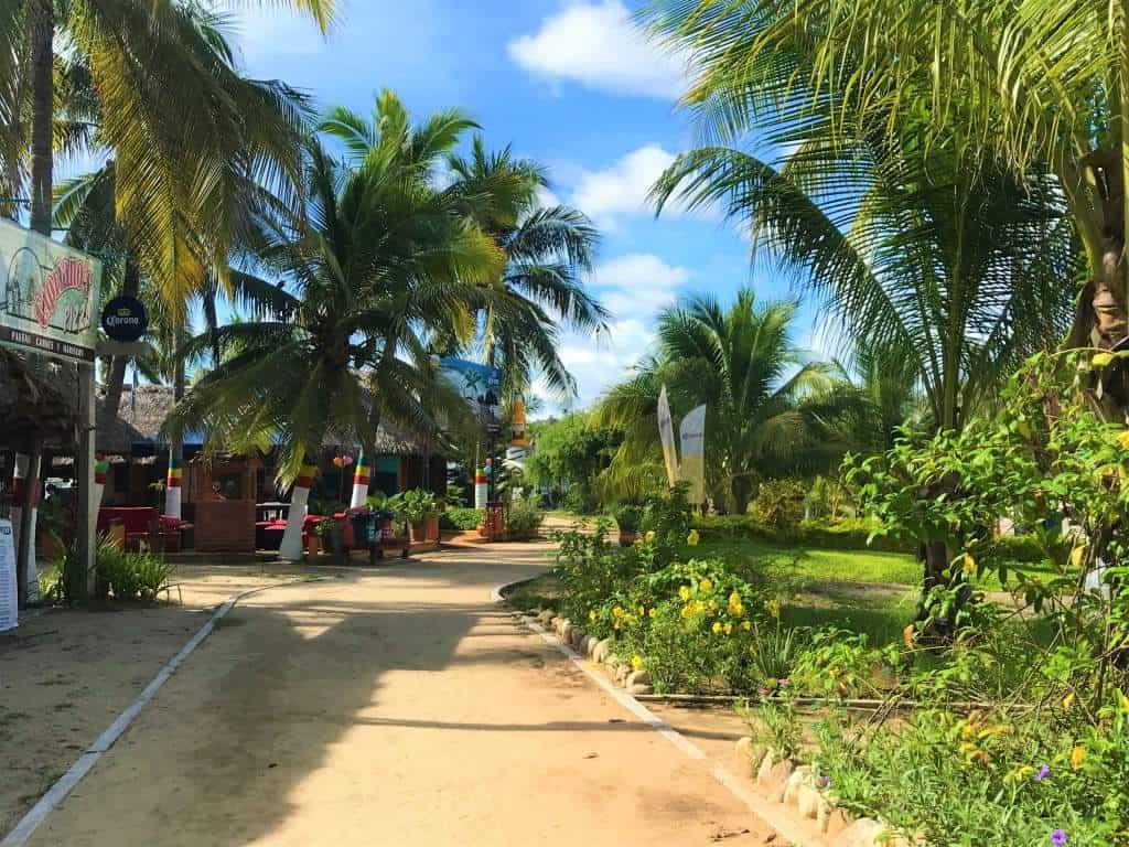 A dirt, accessible path leading through Puerto Escondido.