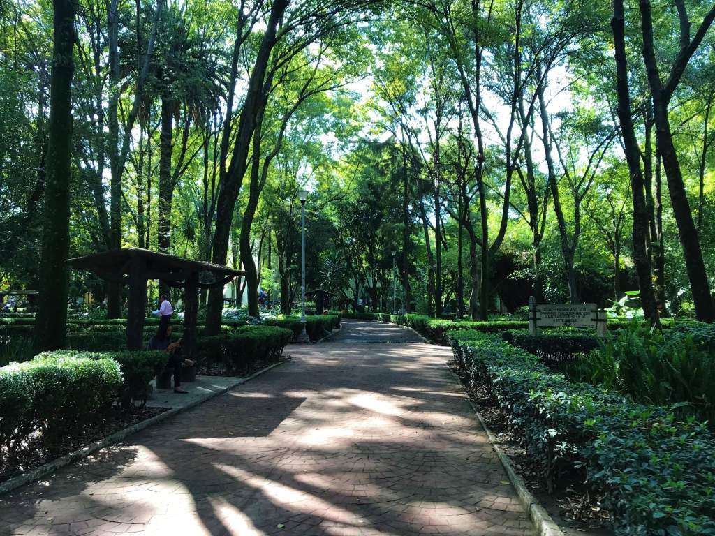 A wheelchair accessible path at Parque España in the upper class district of Mexico City.