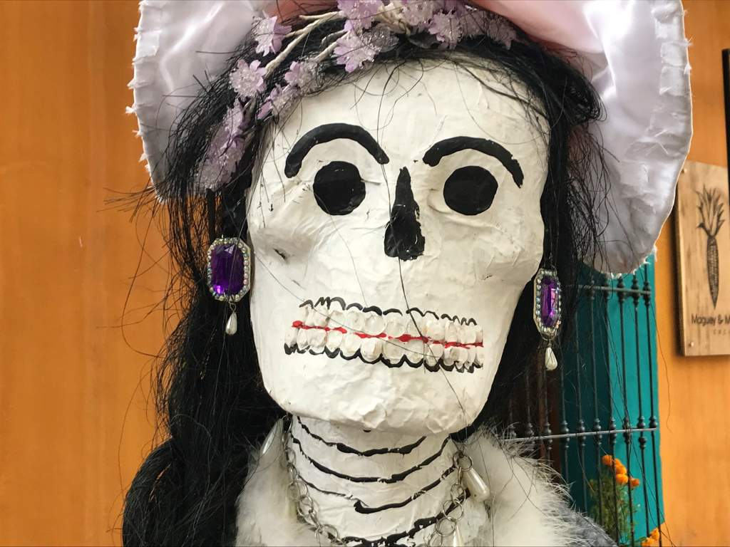 A dressed up woman skeleton.