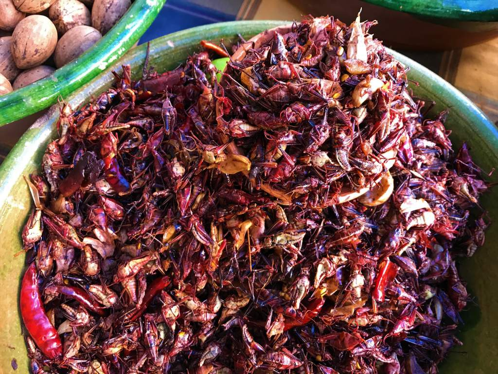 A bowl of spicy grasshoppers.