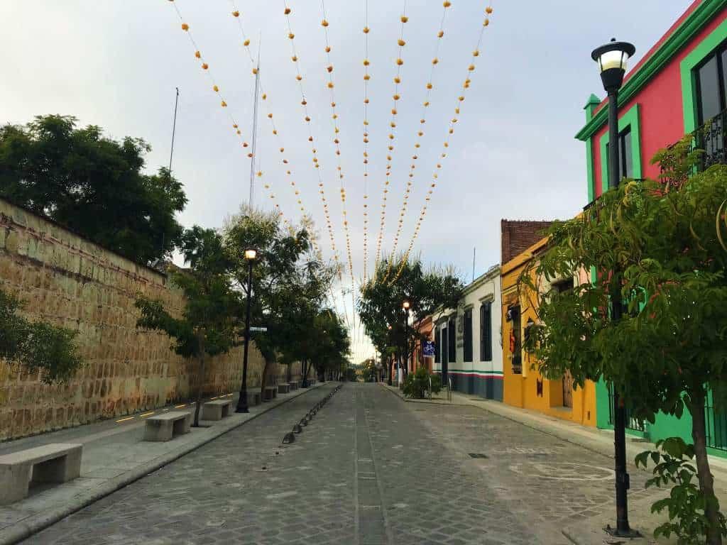 A gently sloping hill in Oaxaca.