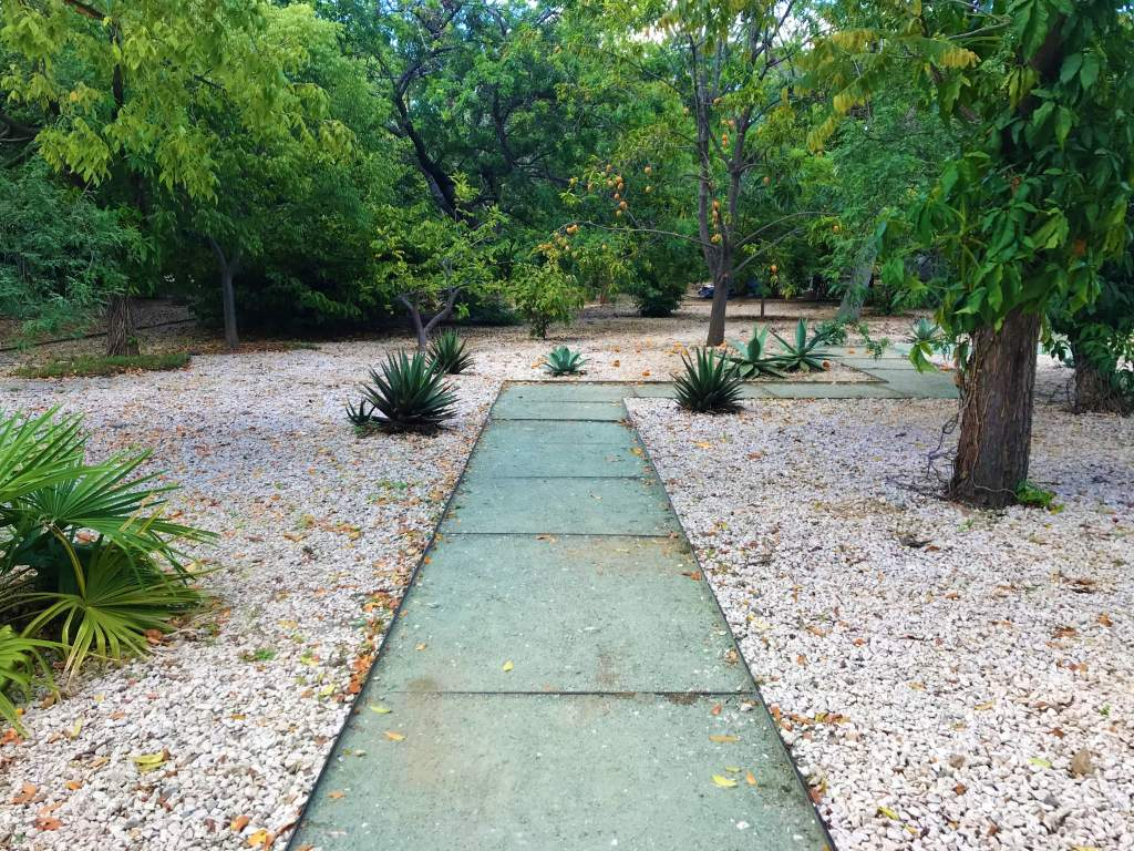 A wheelchair accessible path at the Botanical Gardens in Oaxaca.