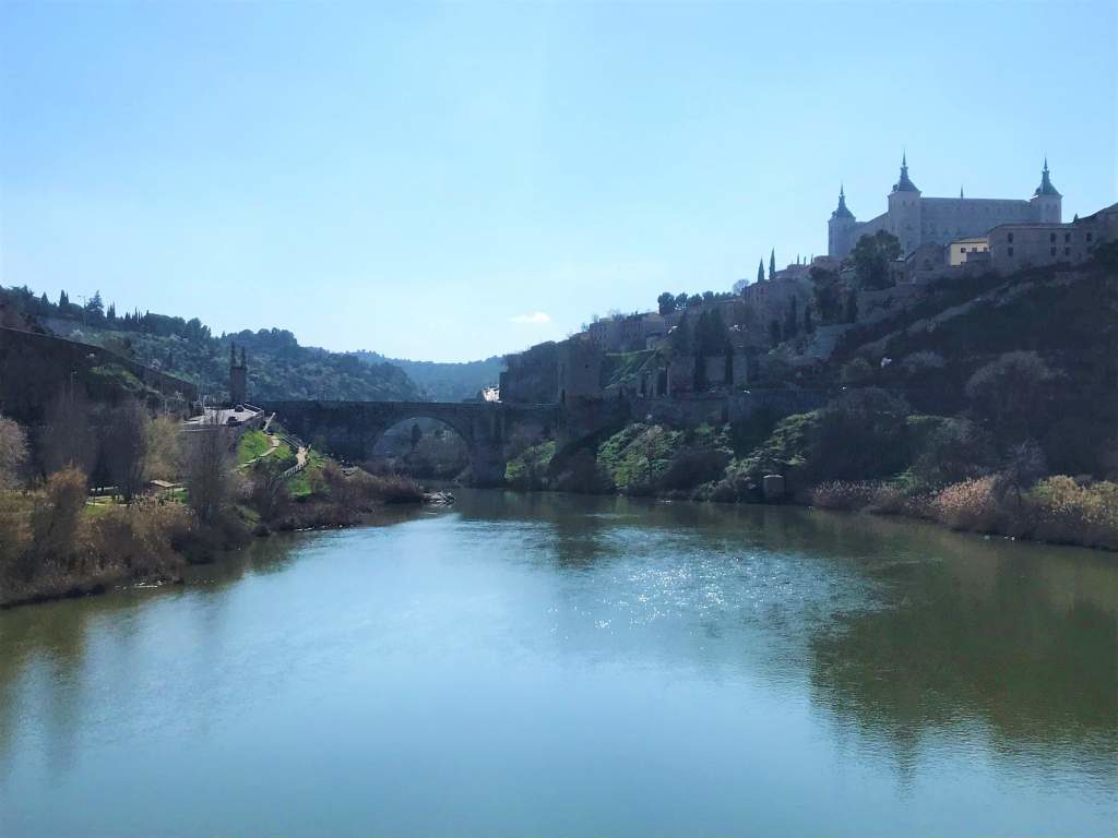 A view of the Alcazar in the background with the river.