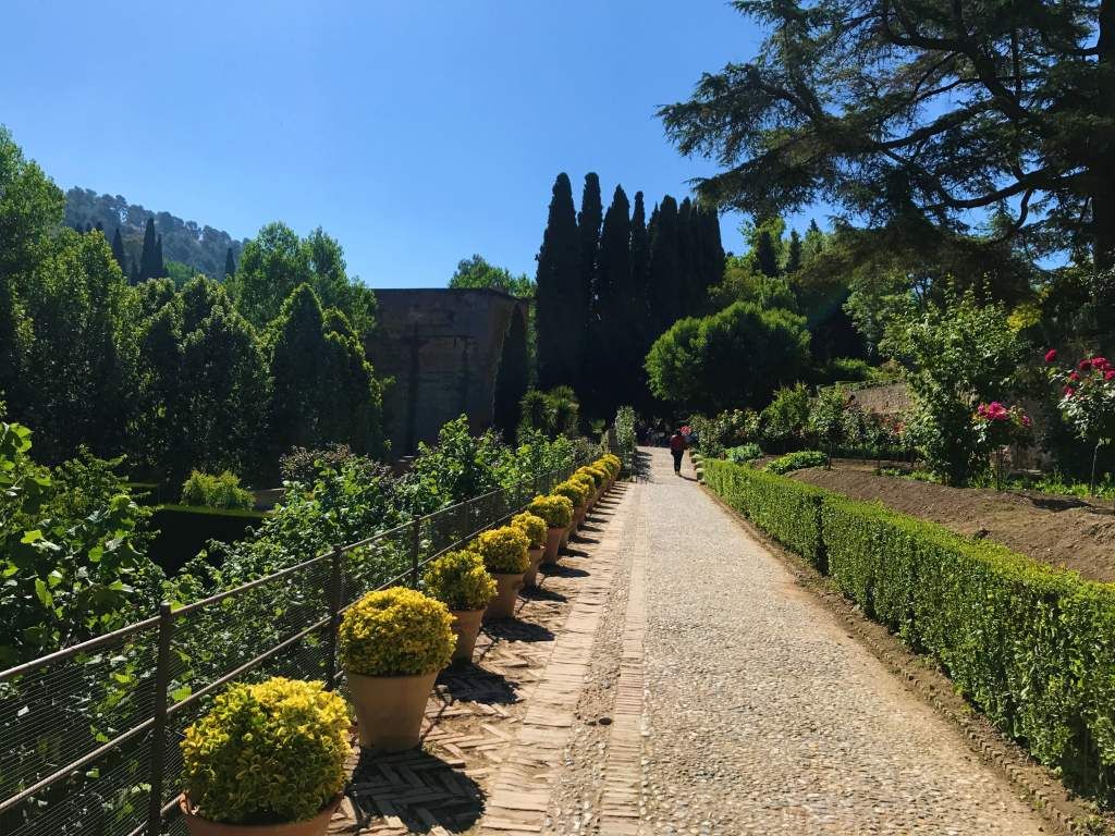 A Wheelchair User's Guide to Granada, Spain