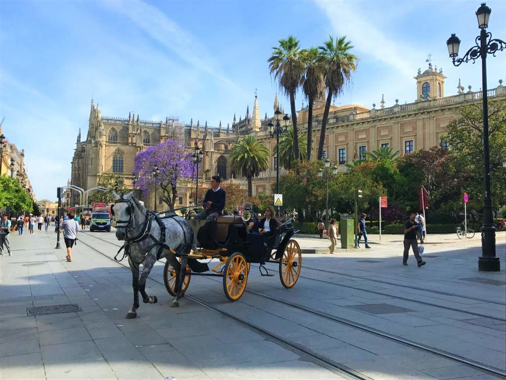 A horse and buggy in downtown Seville.