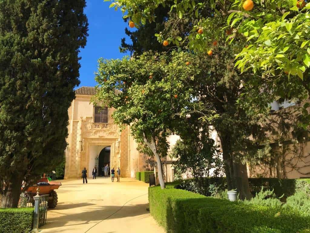 A dirt, wheelchair accessible path at the Alcázar gardens.