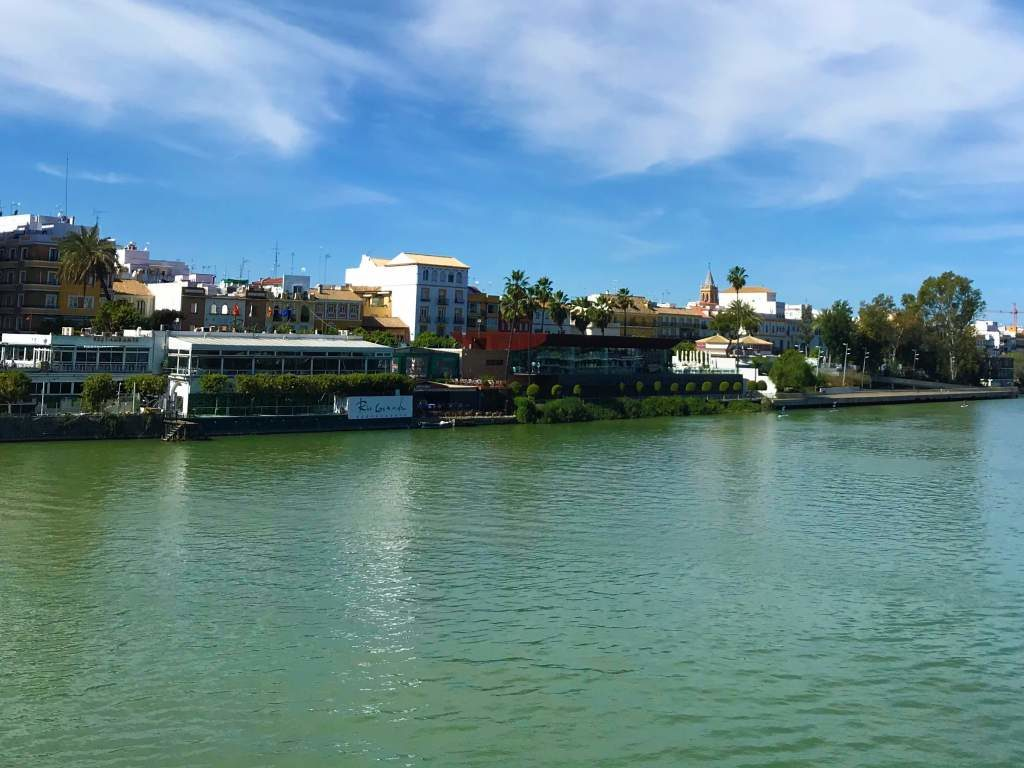 A view of the low lying district of Triana along the river.
