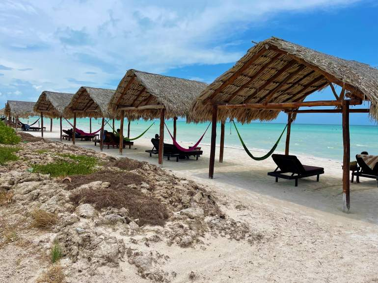 Isla Mujeres or Holbox Island: Which Is Better?