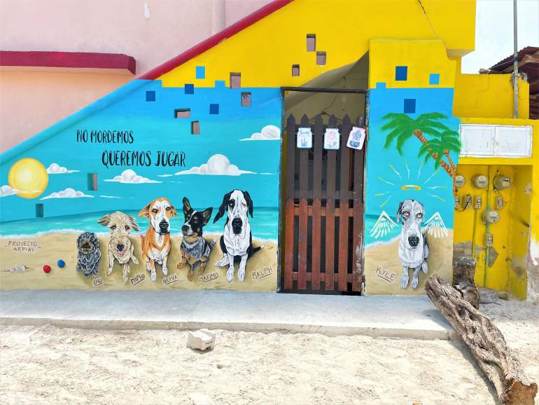 Exploring the street art in Holbox is a great wheelchair accessible activity.