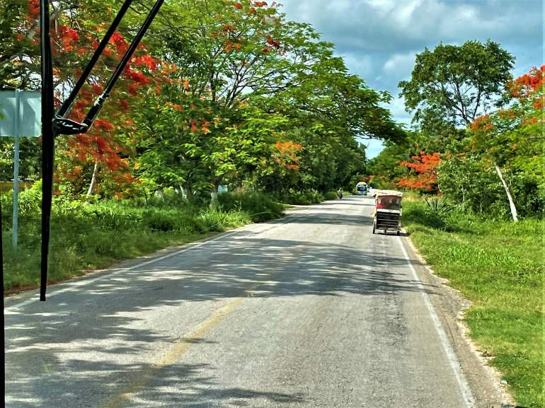 Taking the Bus from Merida to Uxmal: A How-to Guide