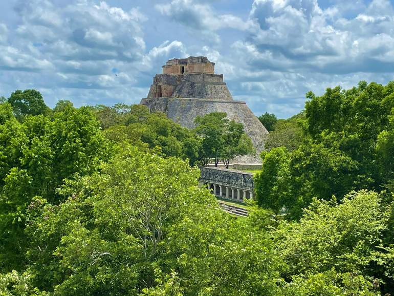 A view of the famous pyramid through trees at Uxmal.