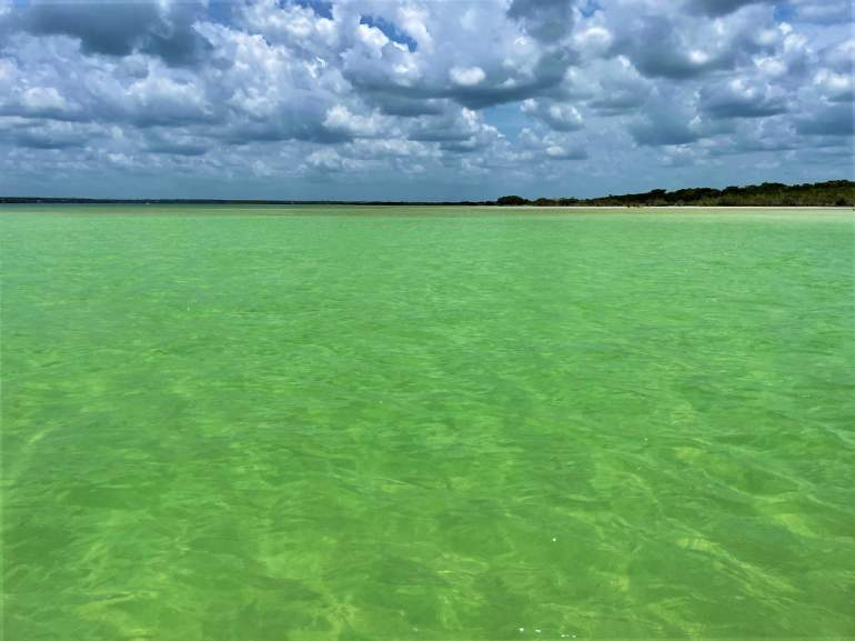 Green-blue water in Bacalar.