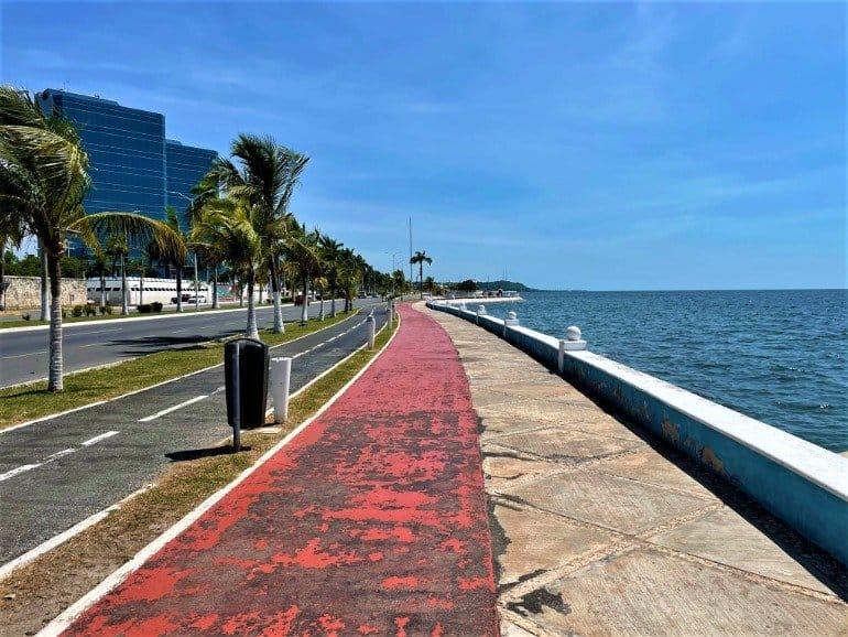 A pedestrian and bike path along the ocean.